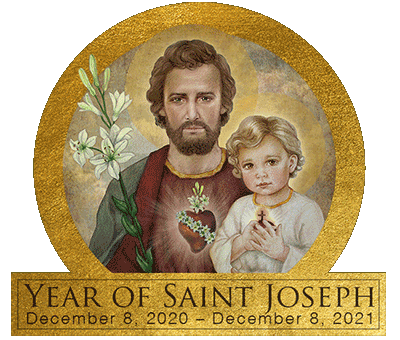 Image result for plenary indulgence year of st joseph